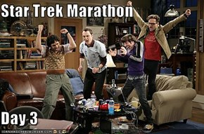 Star Trek Marathon  Day 3