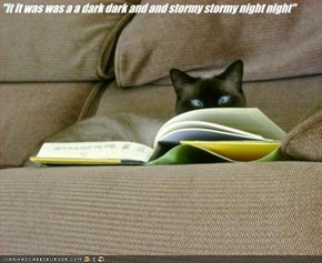 """it It was was a a dark dark and and stormy stormy night night"""