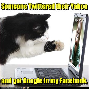Someone Twittered their Yahoo         and got Google in my Facebook.