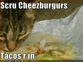 Scru Cheezburgurs  Tacos r in