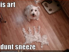 is art  dunt sneeze