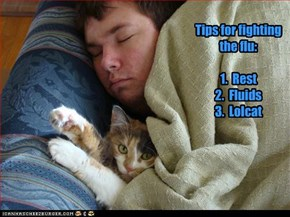 Tips for fighting the flu:  1.  Rest 2.  Fluids 3.  Lolcat