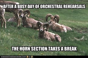 AFTER A BUSY DAY OF ORCHESTRAL REHEARSALS