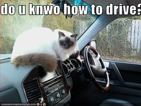 do u knwo how to drive?