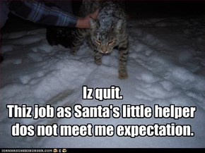 Iz quit.  Thiz job as Santa's little helper  dos not meet me expectation.