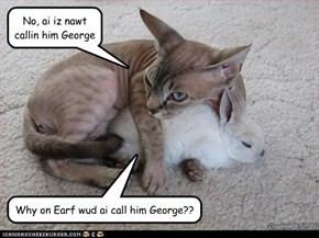 George???