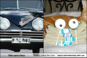 This cars's face Totally Looks Like Geico's cash hobnocking with a cat