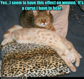 Yes...I seem to have this effect on women.  It's a curse I have to bear.