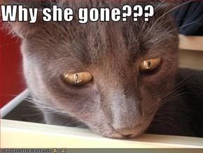 Why she gone???