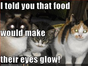 I told you that food would make their eyes glow!