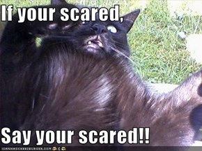 If your scared,   Say your scared!!