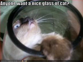 Anyone want a nice glass of cat?