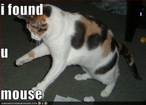 i found  u mouse