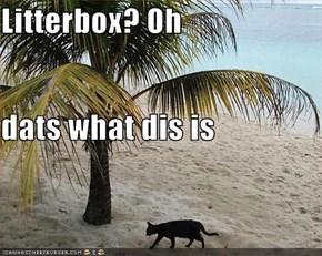 Litterbox? Oh dats what dis is