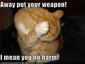 Away put your weapon!  I mean you no harm!