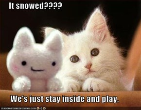 It snowed????        We's just stay inside and play.
