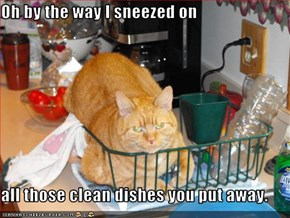 Oh by the way I sneezed on  all those clean dishes you put away.