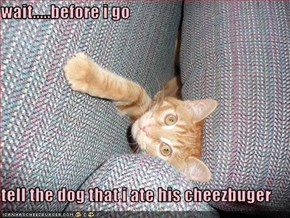 wait.....before i go   tell the dog that i ate his cheezbuger