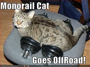 Monorail Cat  Goes OffRoad!
