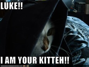 LUKE!!  I AM YOUR KITTEH!!