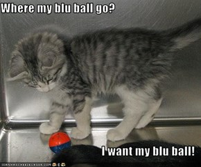 Where my blu ball go?  I want my blu ball!