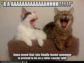 """""""A A AAAAAAAAAAAAAHHHH ! ! ! ! !"""""""