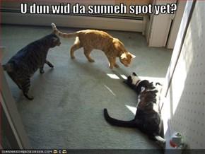 U dun wid da sunneh spot yet?
