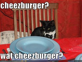 cheezburger?  wat cheezburger?