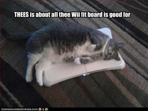 THEES is about all thee Wii fit board is good for