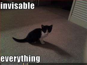 invisable  everything
