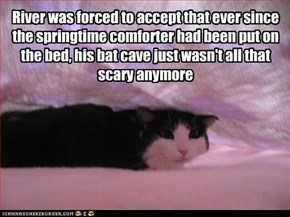 River was forced to accept that ever since the springtime comforter had been put on the bed, his bat cave just wasn't all that scary anymore
