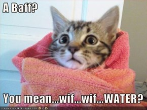 A Baff?     You mean...wif...wif...WATER?