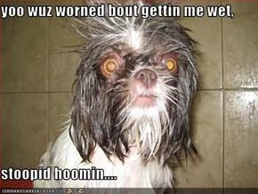 yoo wuz worned bout gettin me wet,  stoopid hoomin....