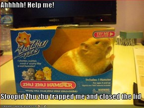 Ahhhhh! Help me!  Stoopid Zhu zhu trapped me and closed the lid
