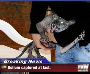 Breaking News - Gollum captured at last.