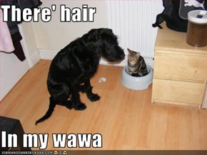 There' hair  In my wawa