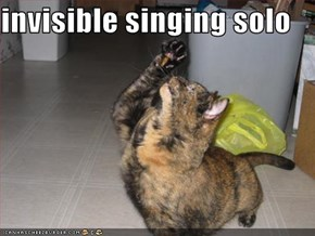 invisible singing solo