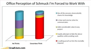 Office Perception of Schmuck