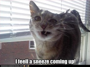 I feell a sneeze coming up!