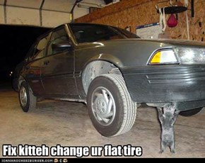 Fix kitteh change ur flat tire