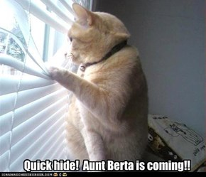 Quick hide!  Aunt Berta is coming!!