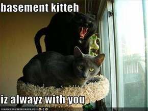 basement kitteh  iz alwayz with you
