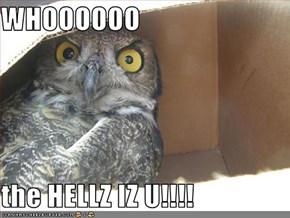 WHOOOOOO  the HELLZ IZ U!!!!