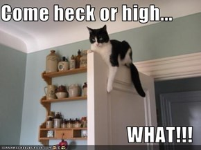 Come heck or high...  WHAT!!!