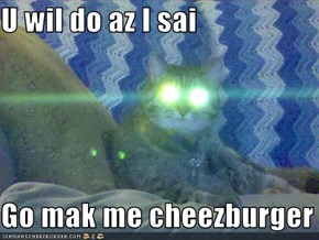 U wil do az I sai   Go mak me cheezburger