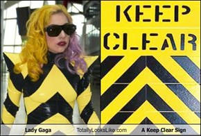 Lady Gaga Totally Looks Like A Keep Clear Sign