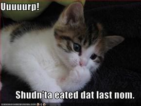 Uuuuurp!  Shudn'ta eated dat last nom.