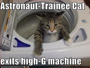 Astronaut-Trainee Cat  exits high-G machine
