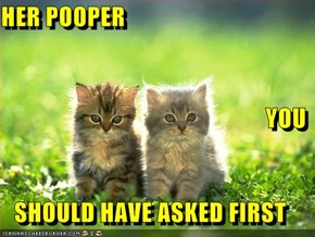 HER POOPER YOU   SHOULD HAVE ASKED FIRST