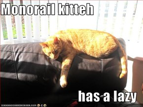 Monorail kitteh  has a lazy